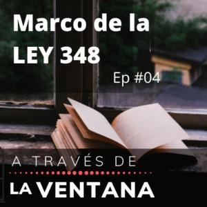 Marco de la Ley 348